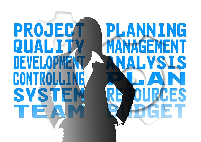 client side project manager